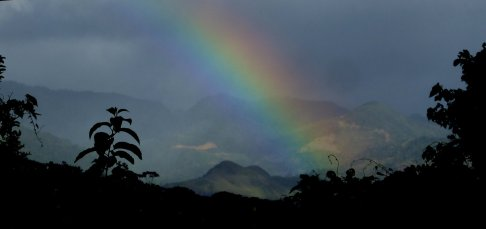 Soms brengt de regen ook iets goeds. Die pot met goud alleen niet gevonden. Op weg terug naar Santa Fé (Panama)