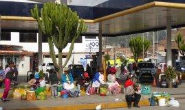 Verkopers bij toffe cactusbomen. Huaraz
