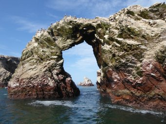 Leuk deurkijkje. Islas Ballestas, Paracas