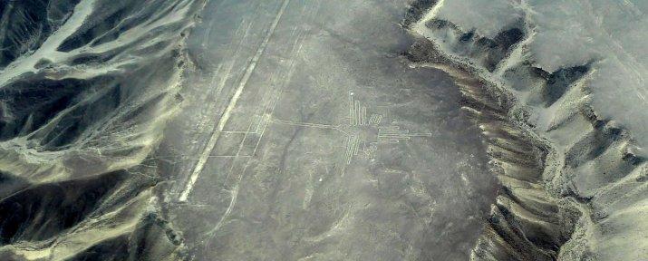 Kolibrie gespot! Nazca