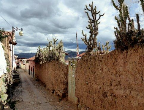 Natuurlijk prikkeldraad. Cusco