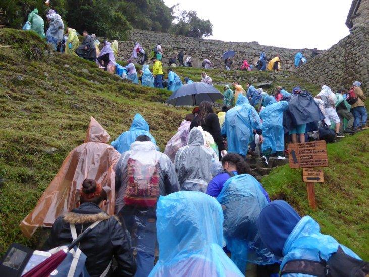 We waren niet alleen... onze vriendjes regen en mist waren er zelfs! Dolle boel! Machu Picchu