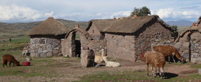 Die lama's en Alpaca's maken het al mooie boerderijtje helemaal af. Sullistani