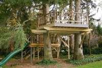 New Tree House Plans Pdf - New Home Plans Design