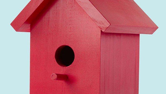Red Bird House Plans Inspirational Easy E Board Bird House