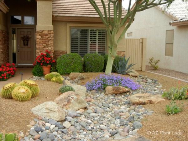 arizona-front-yard-landscape-design