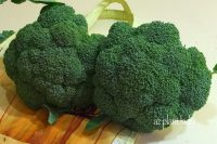 Winter Vegetable Harvest: Broccoli and How to Freeze It ...