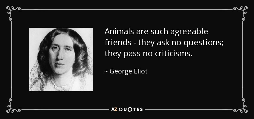 Animals are such agreeable friends - they ask no questions; they pass no criticisms. - George Eliot