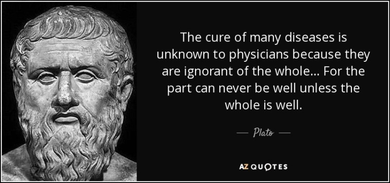 The cure of many diseases is unknown to physicians because they are ignorant of the whole... For the part can never be well unless the whole is well. - Plato