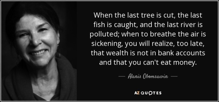 Image result for Obomsawin quote
