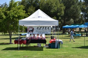 Annual Picnic & General Meeting @ Harry Griffen Park