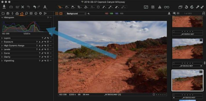 Capture One Histogram Tool shows the histogram for the image as displayed in the main viewer.