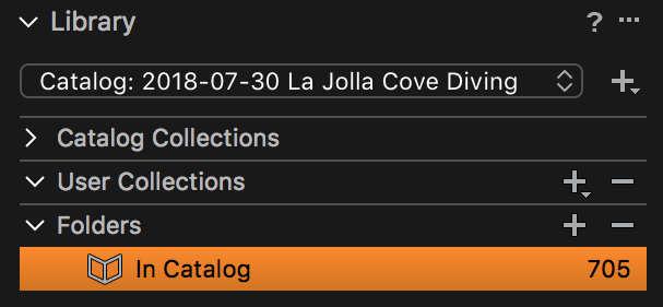 Building a Destination Folder from Metadata - Capture One Catalogs
