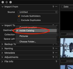 Capture One Imports selecting Inside Catalog during import