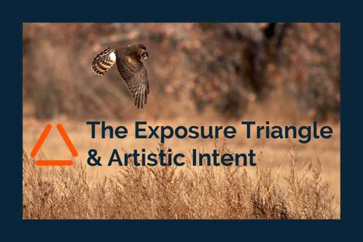 Exposure Triangle and Artistic Intent - How to choose exposure settings.