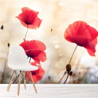 Red Poppy Flowers Wall Mural Floral Vintage Wallpaper