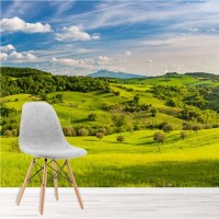 Tuscan Countryside Wall Mural Green Landscape Wallpaper ...