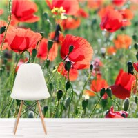 Red Poppy Flower Wall Mural Floral Meadow Wallpaper Living ...