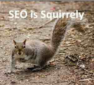 SEO is squirrely and who you can blame