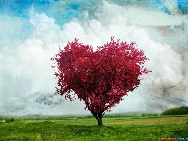 Первый этап отношений влюбленность
