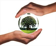 Eco-repsonsabilité