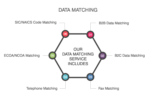 data matching services data