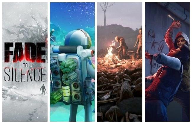 Survival PC Video Games