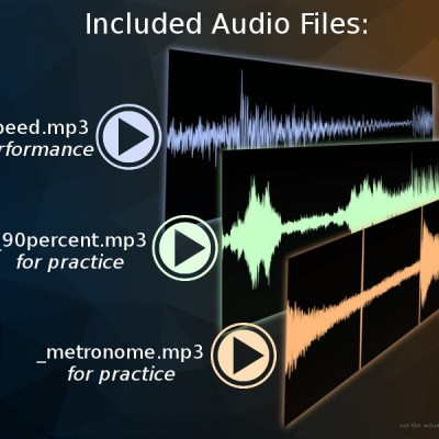 Types of Audio Flies included with purchase