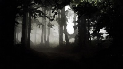 A Dark and Scary Forest