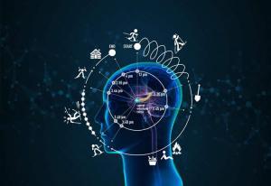 Perception and memory-संवेगो का संगम, अनुभूति एवं स्मृति