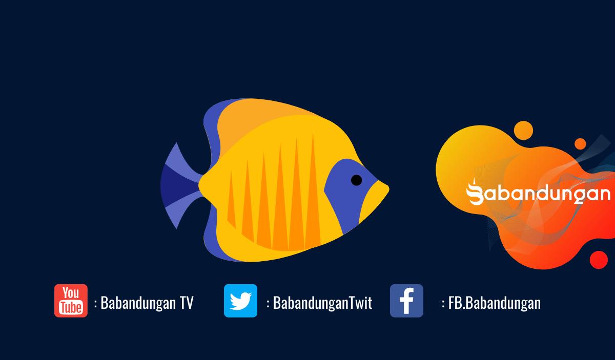 Panduan Cara Budidaya Ikan Baronang Bagi Pemula