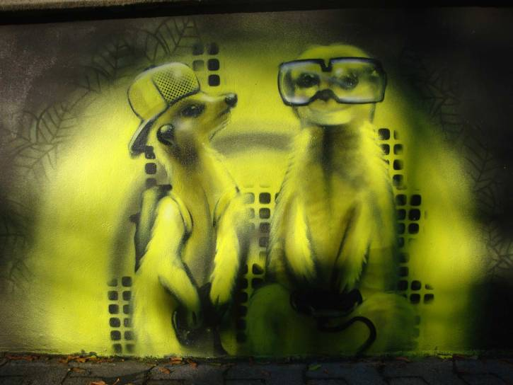 Erdmännchen, meerkatz, Brücke Bad Soden 2012