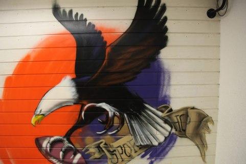 eagle-football