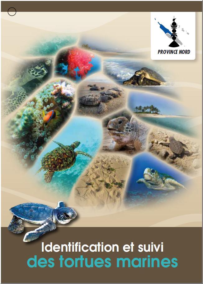 Identification et suivi des tortues marines de Nouvelle Calédonie.