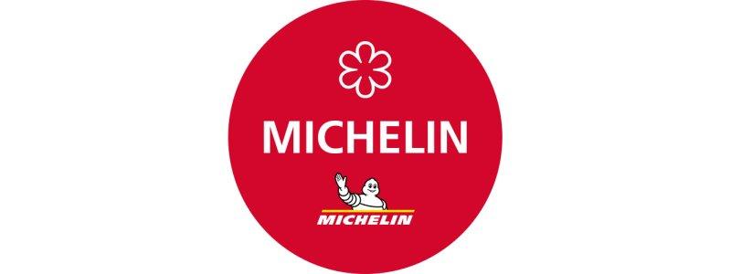 reviews michelin