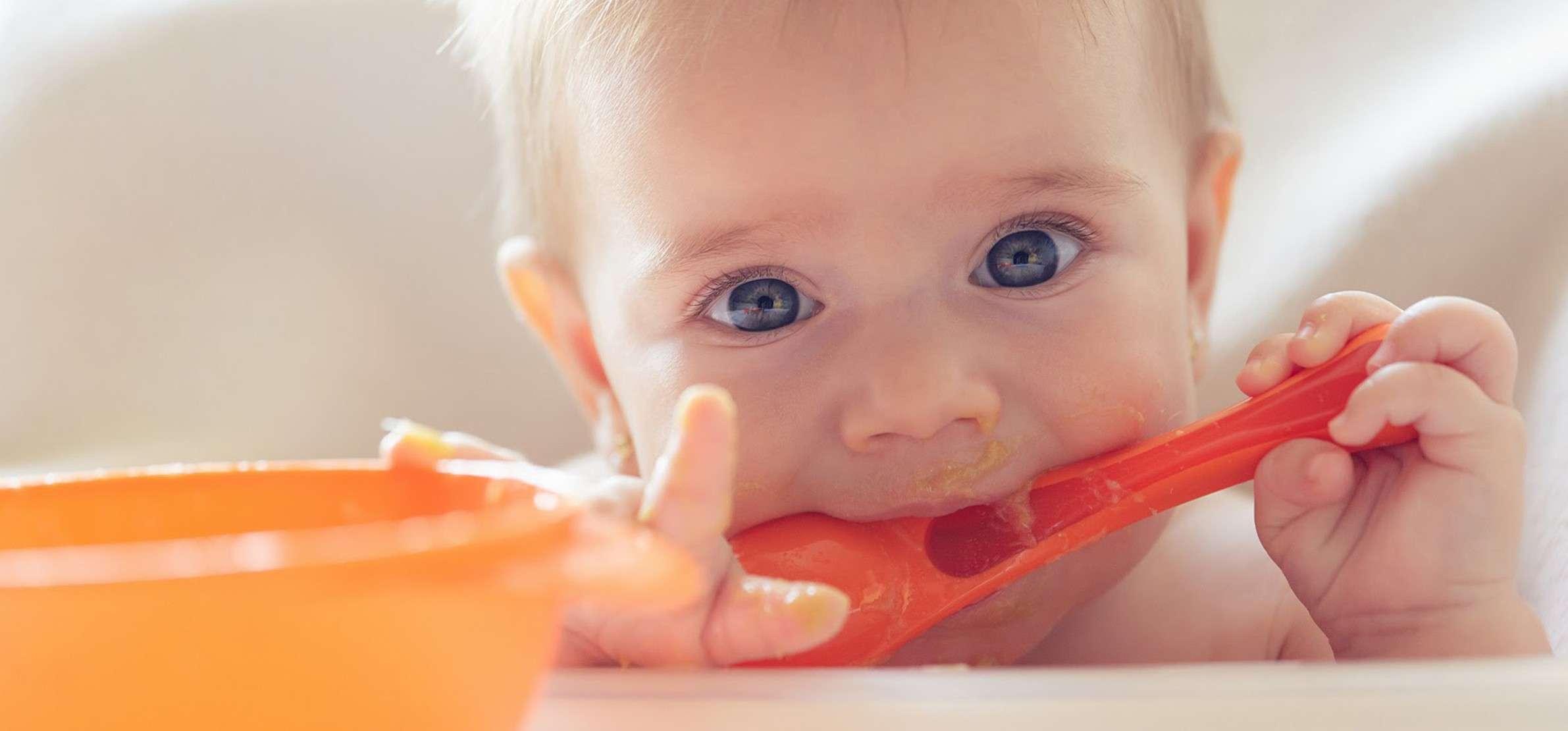 un menu type pour votre bebe de 6 a 8 mois