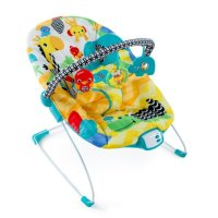 best bouncy chairs for babies - BabyCare Mag