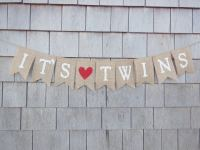 The Best Themes for a Twin Baby Shower