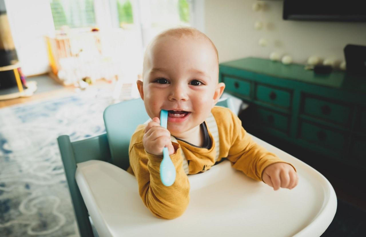 Dein Baby wird die Speisen aus einem Babynahrungszubereiter lieben!