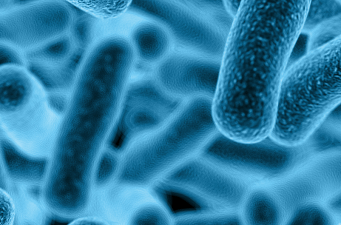 Microbe Myth: Kids need to get sick to build their immune system