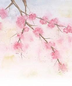 Watercolour Collection