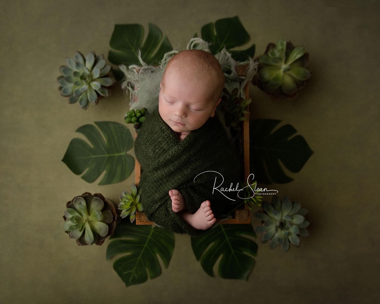Newborn Baby Backdrop