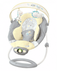 Save 42% on the Bright Starts InGenuity Automatic Bouncer ...