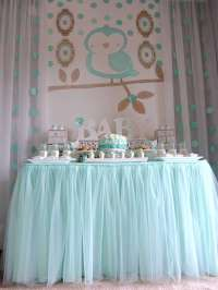 Welcome Home Baby Owl Shower