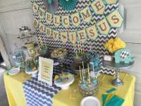 Chevron Elephant Baby Shower