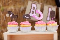 Cowgirl Baby Shower Decorations and Party Favors - Baby ...