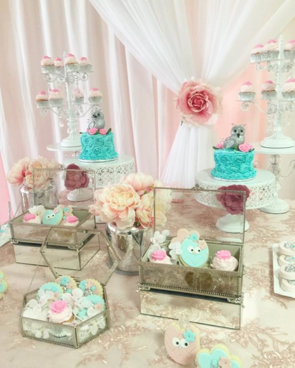 Peach And Blue Owl Baby Shower