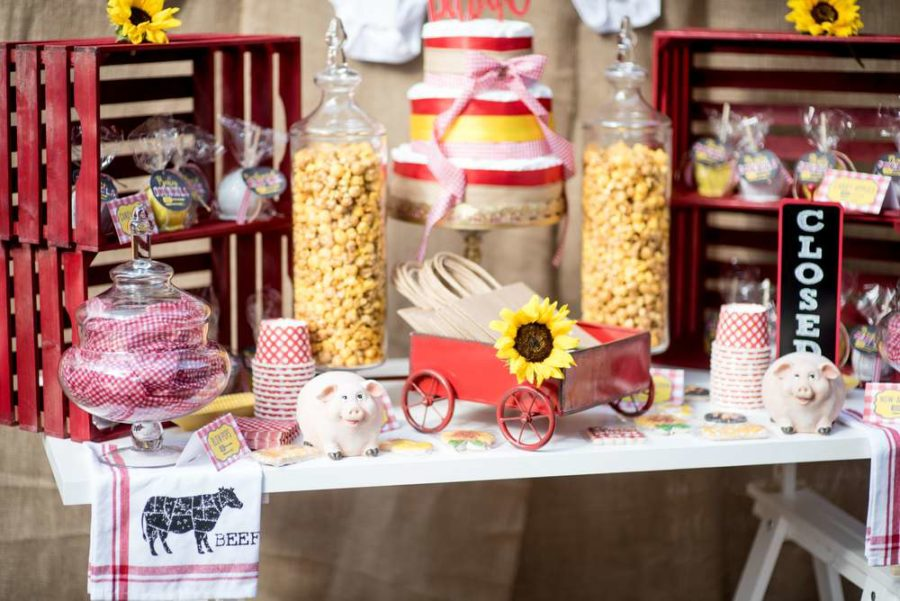 Backyard BBQ Baby Shower  Baby Shower Ideas  Themes  Games