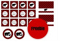 Free Lumberjack Baby Shower Party Printable - Baby Shower ...