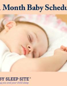 month old baby schedule also the sleep site toddler rh babysleepsite